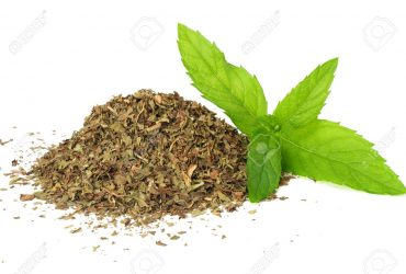 Fresh mint leaves with dried mint leaves isolated on white background